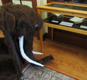 Book cart dressed as woolly mammoth